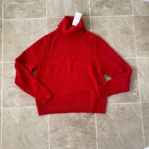 NWT a new day red sweater